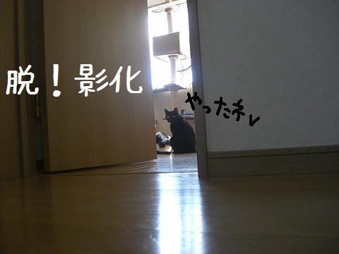 Jam19